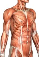 Increase-HGH-Levels-Naturally