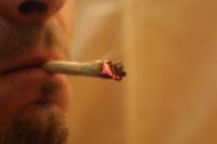 testosterone and marijuana