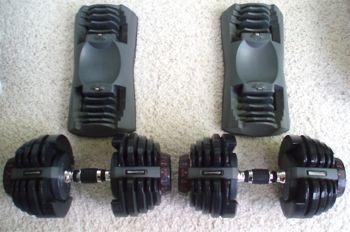 bowflex dumbbels base weights